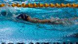 לימוד שחיה לילדים והכנה לתחרויות